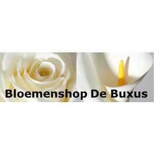 Buxus Bloemen
